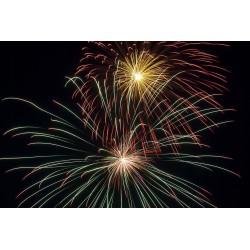 Feuerwerksprofi - MFH10